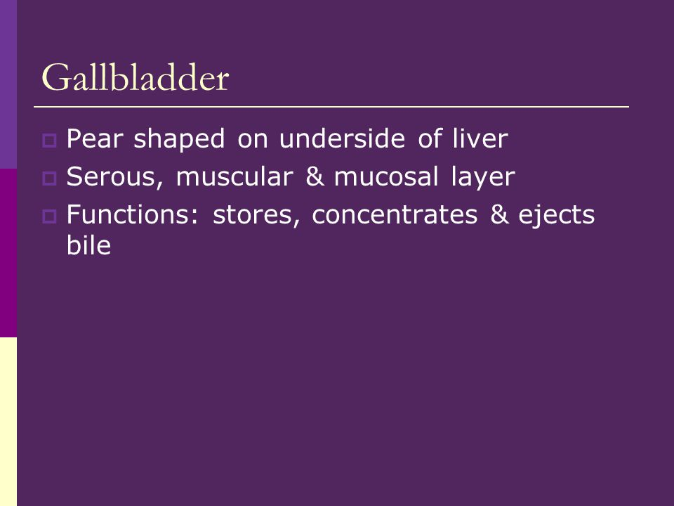Gallbladder Pear shaped on underside of liver