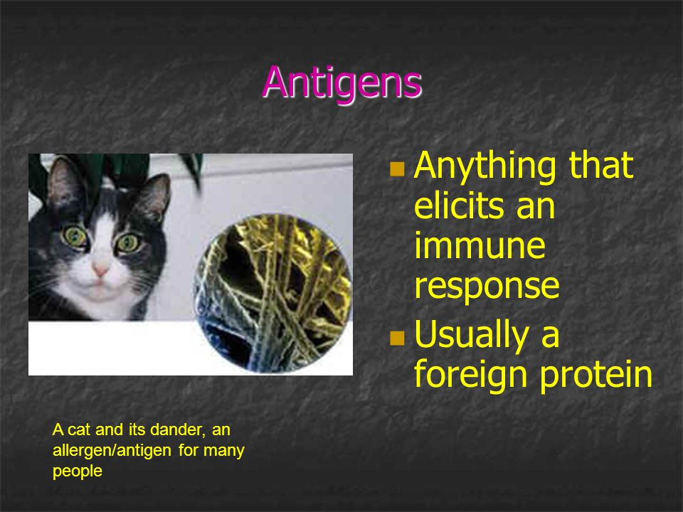 Antigens Anything that elicits an immune response