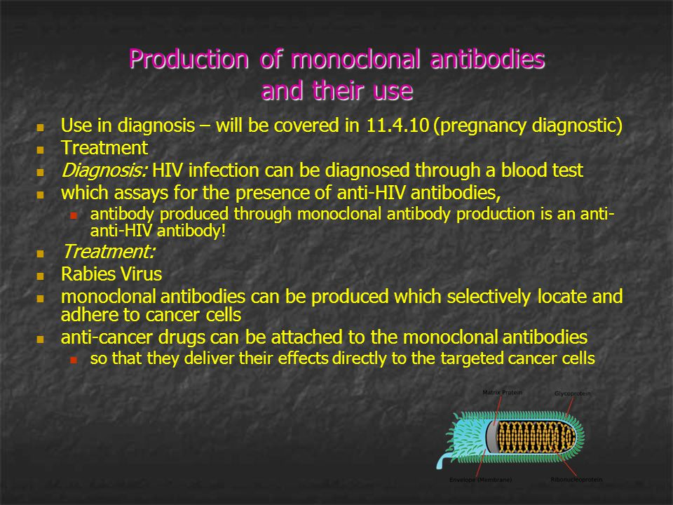 Production of monoclonal antibodies and their use