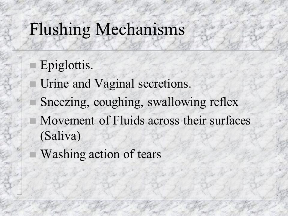 Flushing Mechanisms Epiglottis. Urine and Vaginal secretions.