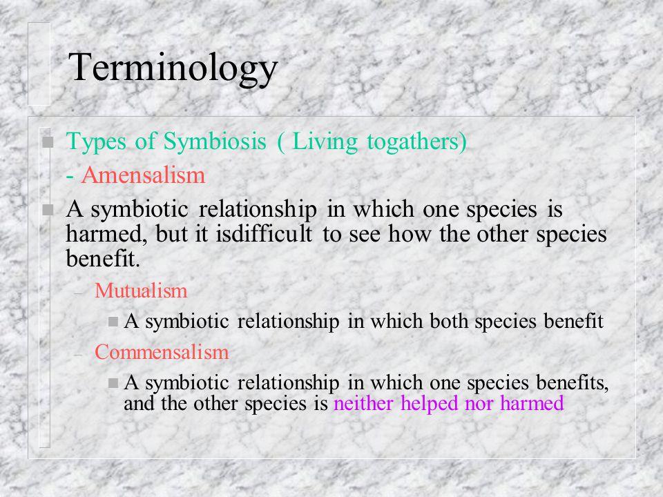 Terminology Types of Symbiosis ( Living togathers) - Amensalism