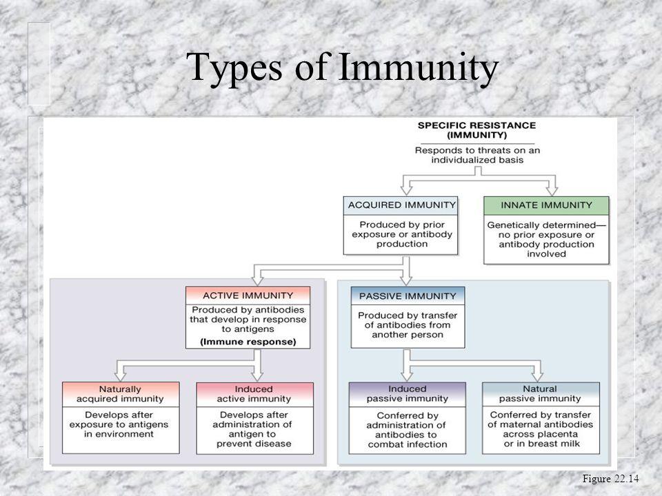 Types of Immunity Figure 22.14