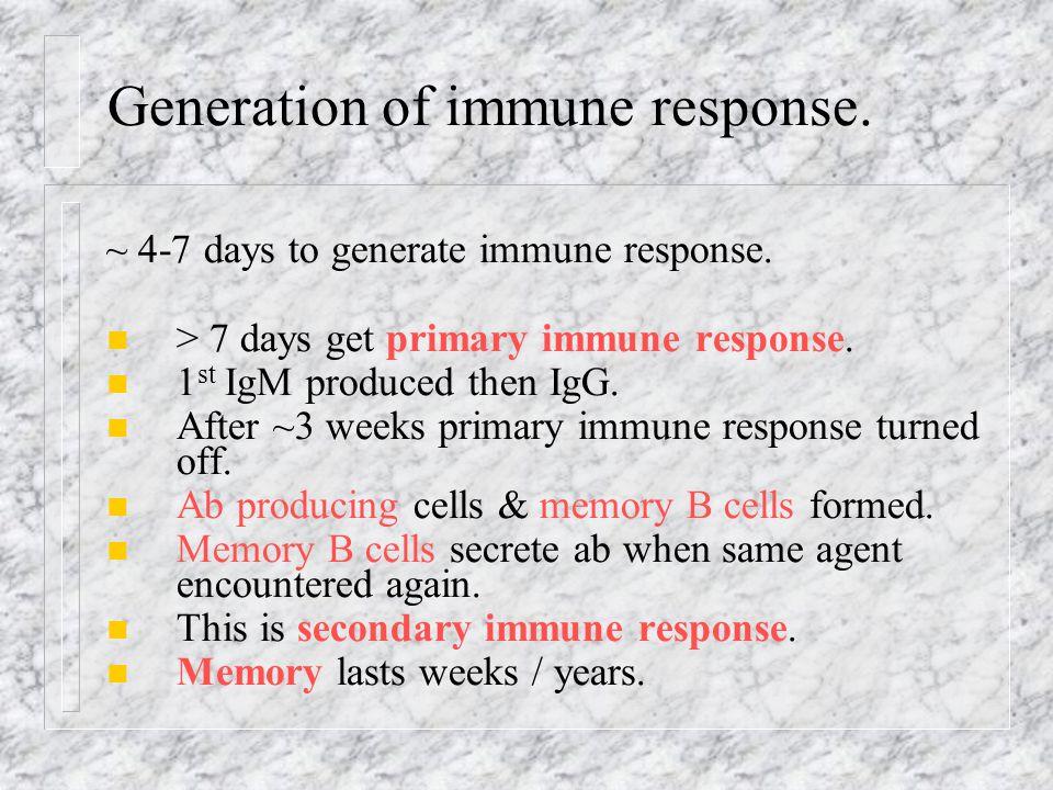 Generation of immune response.