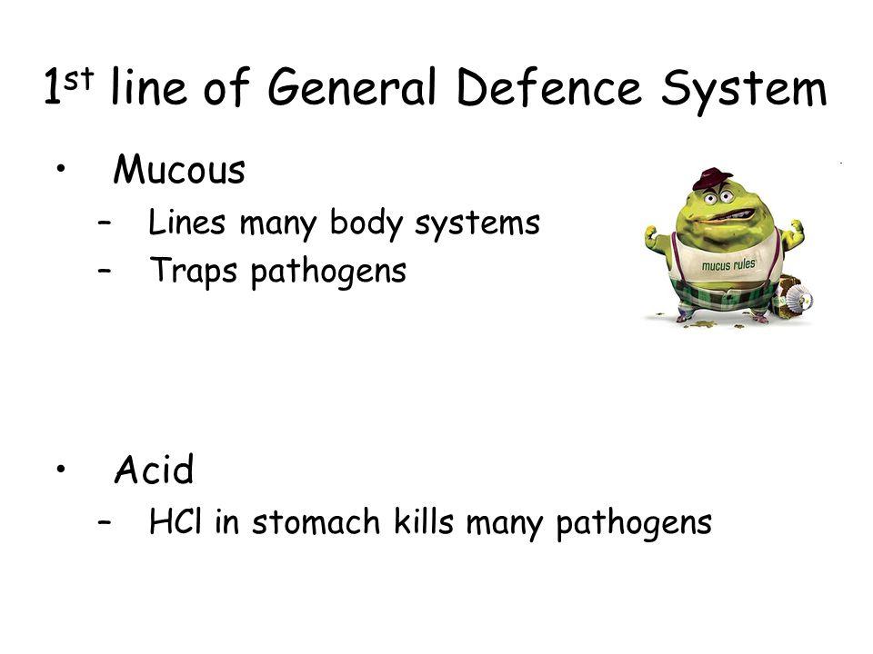 1st line of General Defence System