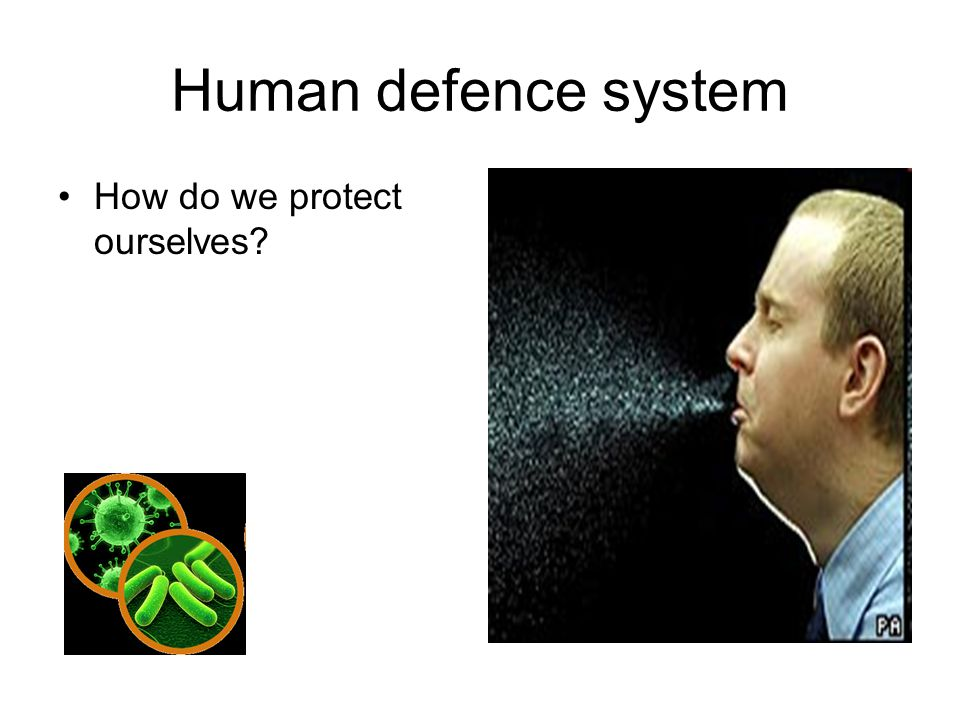 Human defence system How do we protect ourselves