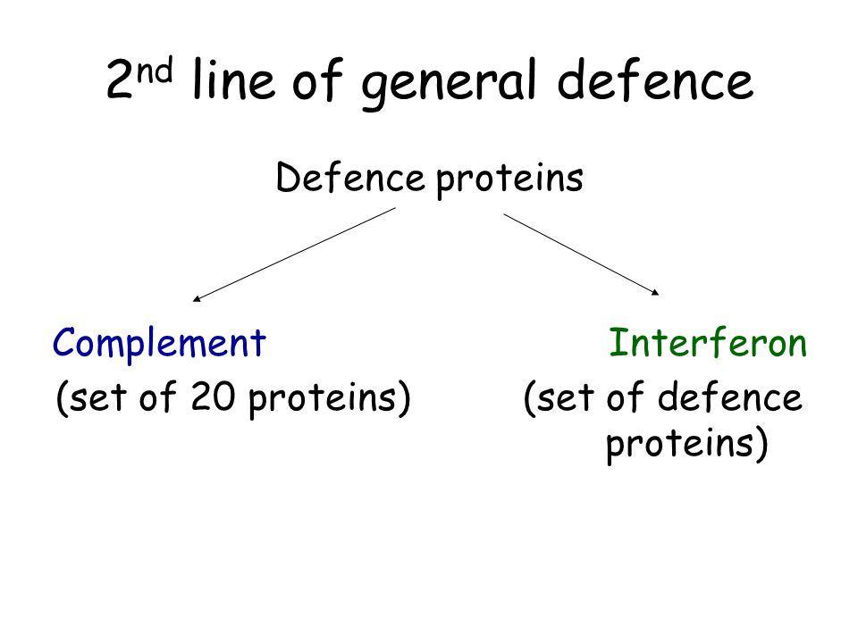 2nd line of general defence