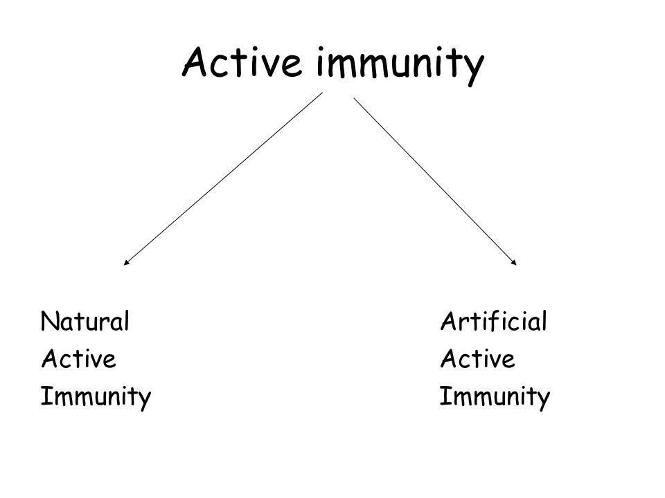 Active immunity Natural Artificial Active Active Immunity Immunity