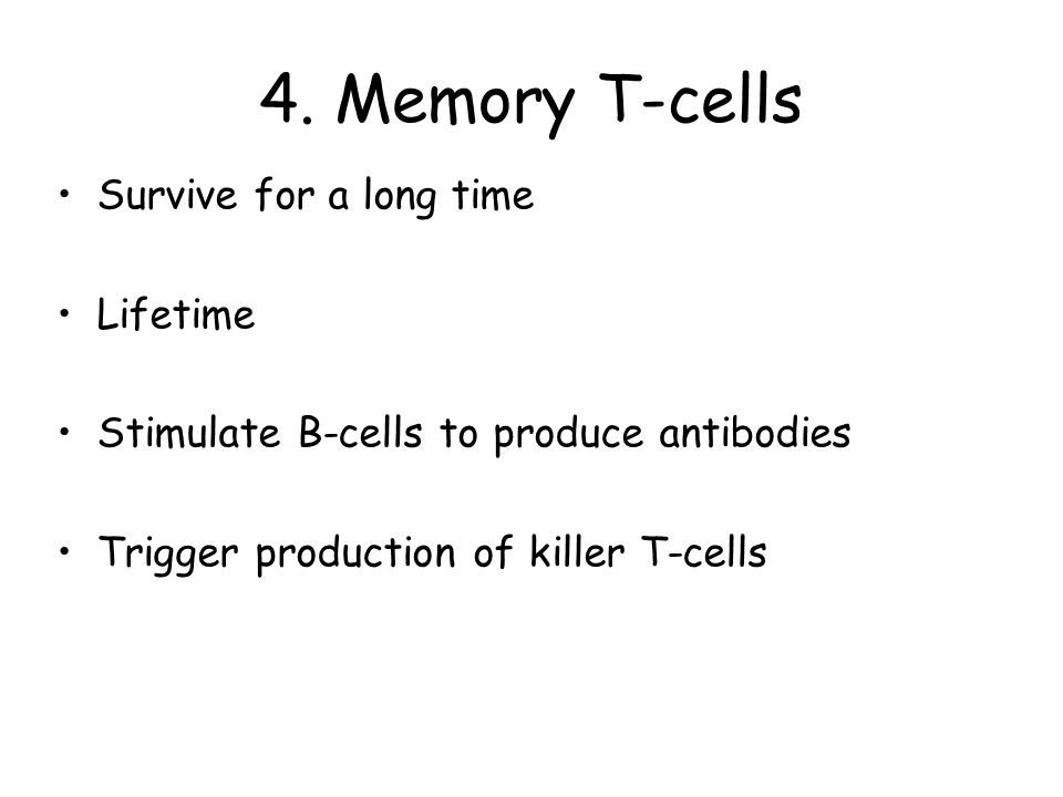 4. Memory T-cells Survive for a long time Lifetime