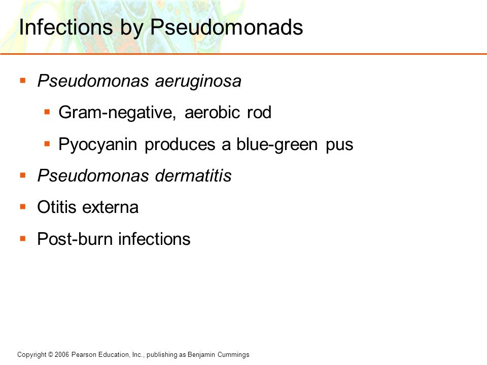 Infections by Pseudomonads