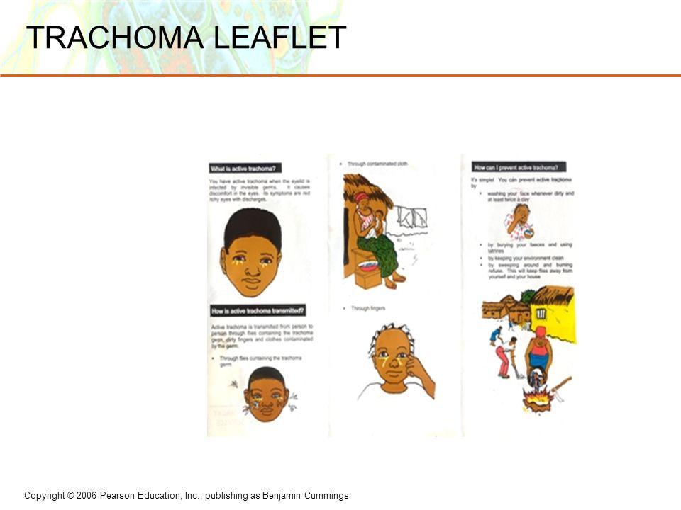 TRACHOMA LEAFLET