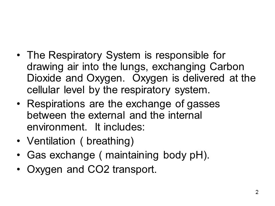 The Respiratory System is responsible for drawing air into the lungs, exchanging Carbon Dioxide and Oxygen. Oxygen is delivered at the cellular level by the respiratory system.