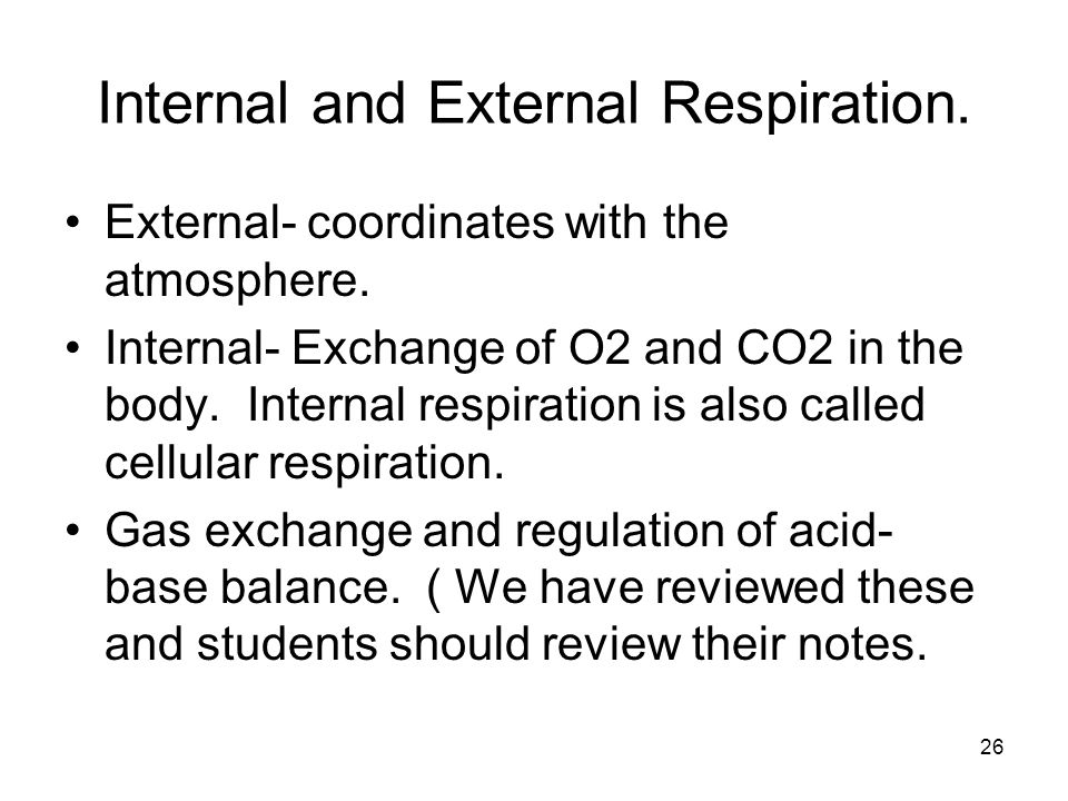 Internal and External Respiration.