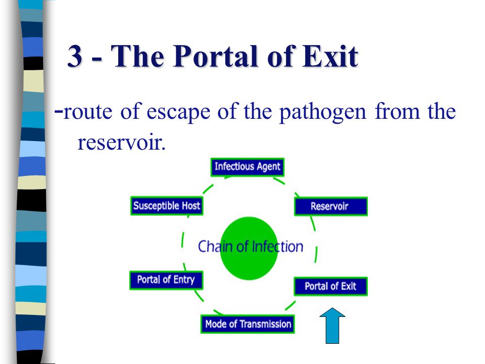 3 - The Portal of Exit -route of escape of the pathogen from the reservoir.