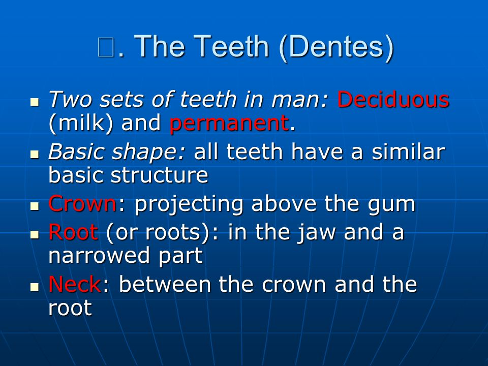Ⅴ. The Teeth (Dentes) Two sets of teeth in man: Deciduous (milk) and permanent. Basic shape: all teeth have a similar basic structure.