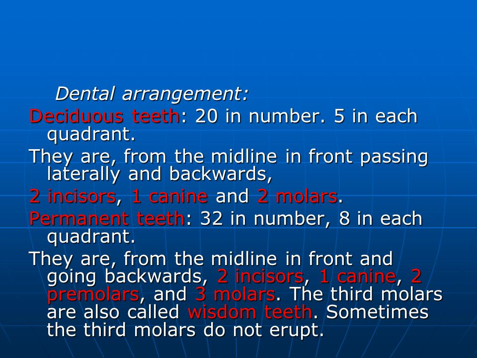 Dental arrangement: Deciduous teeth: 20 in number. 5 in each quadrant. They are, from the midline in front passing laterally and backwards,