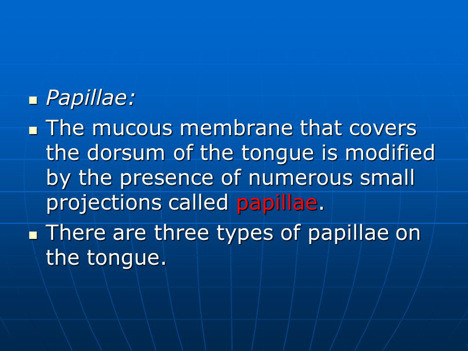 Papillae: The mucous membrane that covers the dorsum of the tongue is modified by the presence of numerous small projections called papillae.