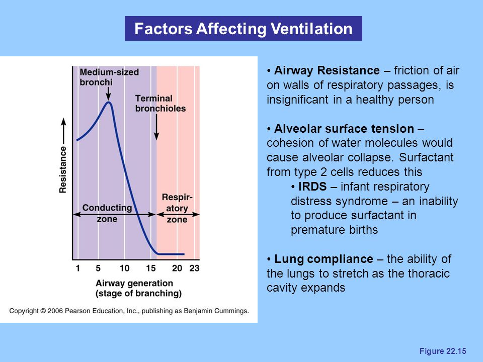 Factors Affecting Ventilation