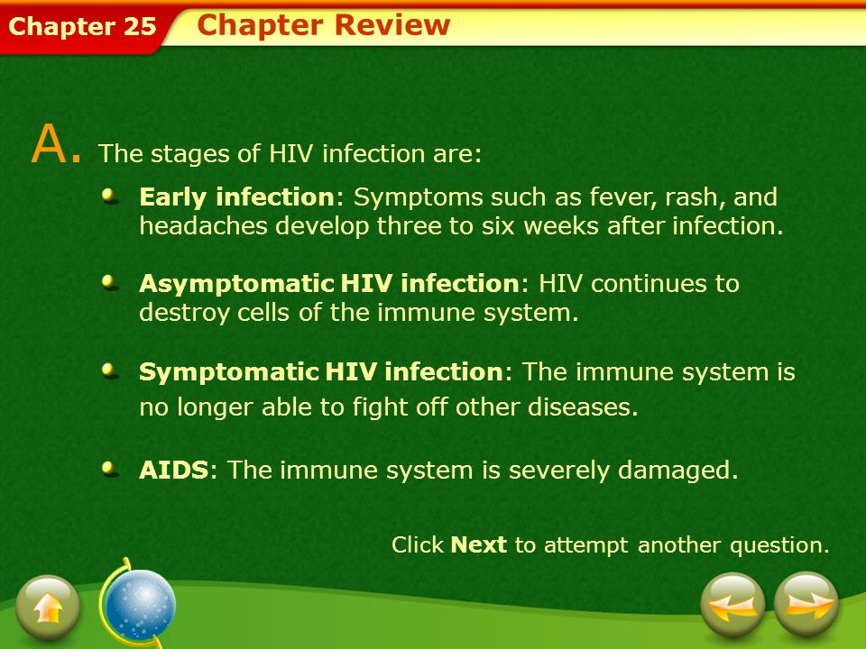 A. The stages of HIV infection are: