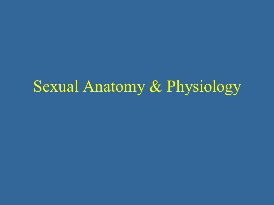 Sexual Anatomy & Physiology
