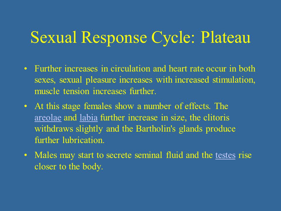 Sexual Response Cycle: Plateau