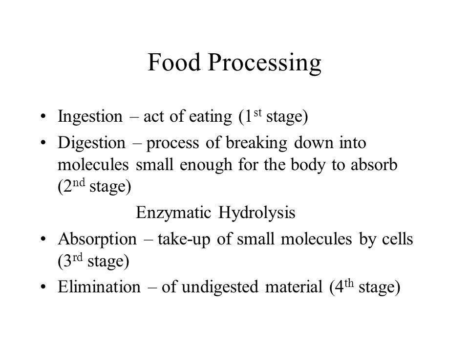 Food Processing Ingestion – act of eating (1st stage)