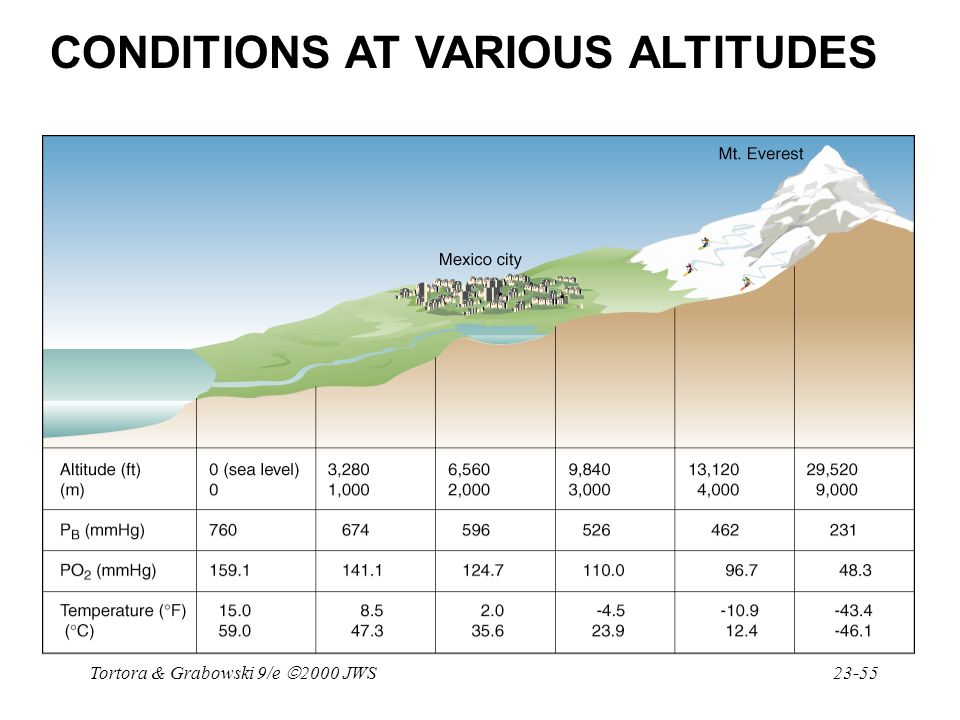 CONDITIONS AT VARIOUS ALTITUDES