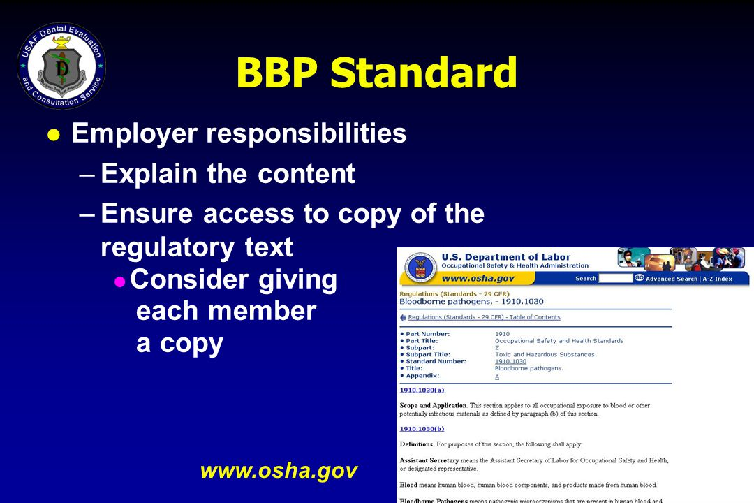 BBP Standard Employer responsibilities Explain the content
