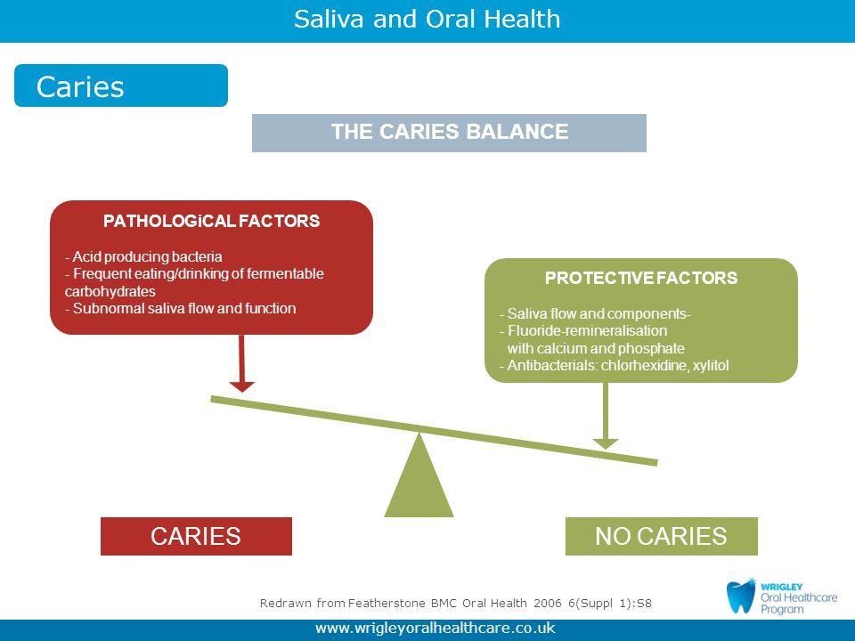 Redrawn from Featherstone BMC Oral Health 2006 6(Suppl 1):S8