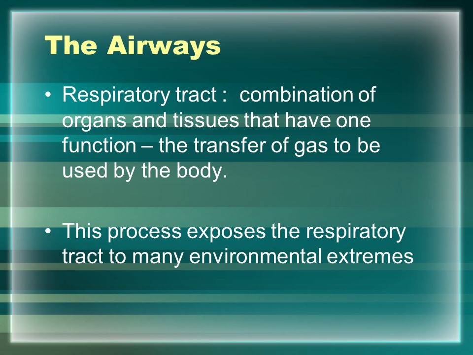 The Airways Respiratory tract : combination of organs and tissues that have one function – the transfer of gas to be used by the body.