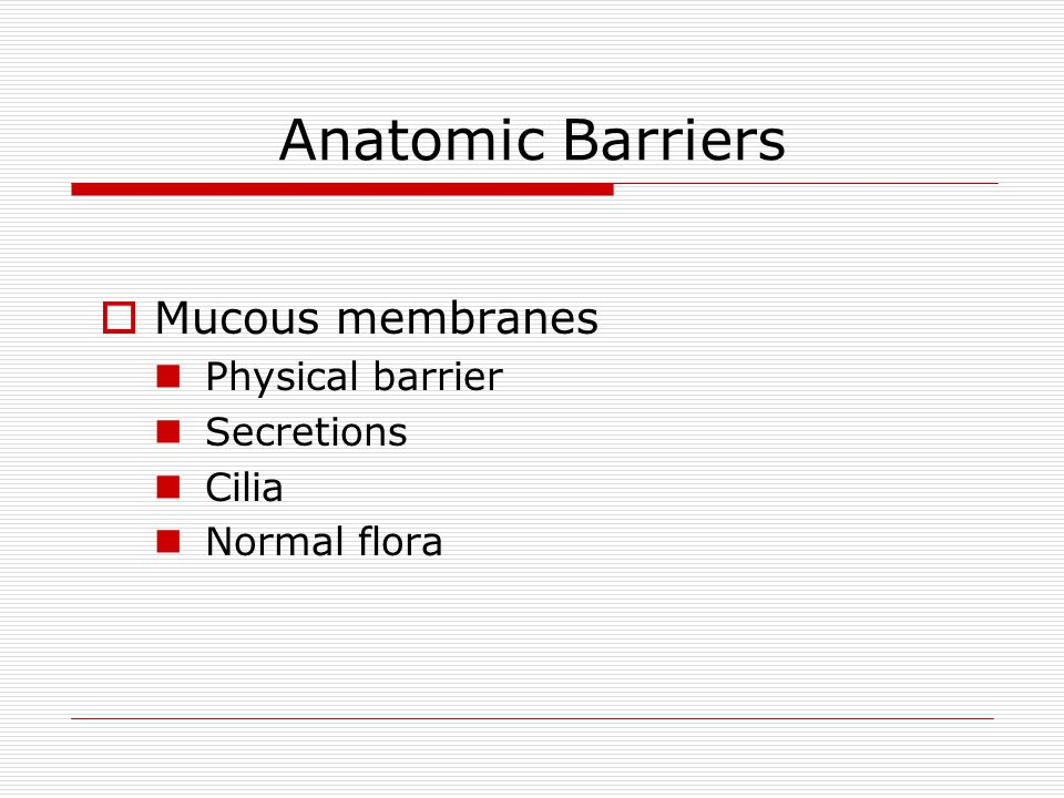 Anatomic Barriers Mucous membranes Physical barrier Secretions Cilia