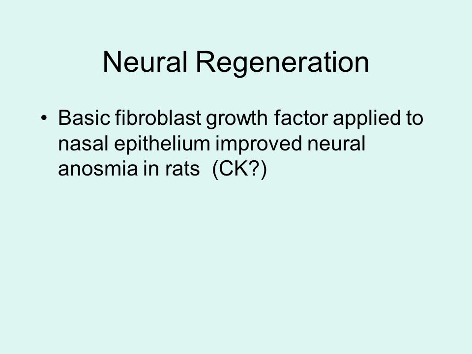 Neural Regeneration Basic fibroblast growth factor applied to nasal epithelium improved neural anosmia in rats (CK )