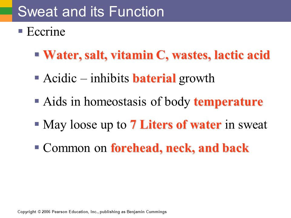 Sweat and its Function Eccrine