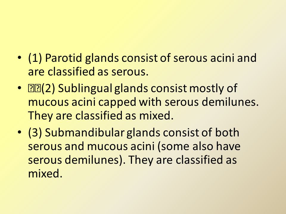 (1) Parotid glands consist of serous acini and are classified as serous.