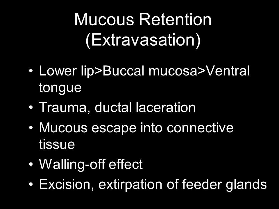 Mucous Retention (Extravasation)