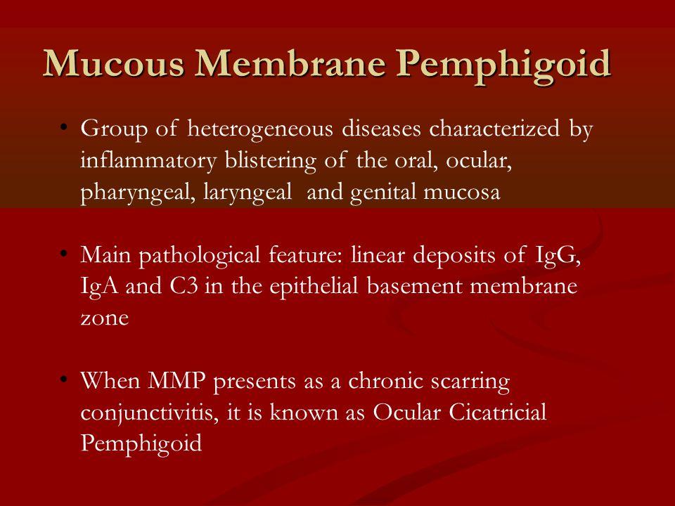 Mucous Membrane Pemphigoid