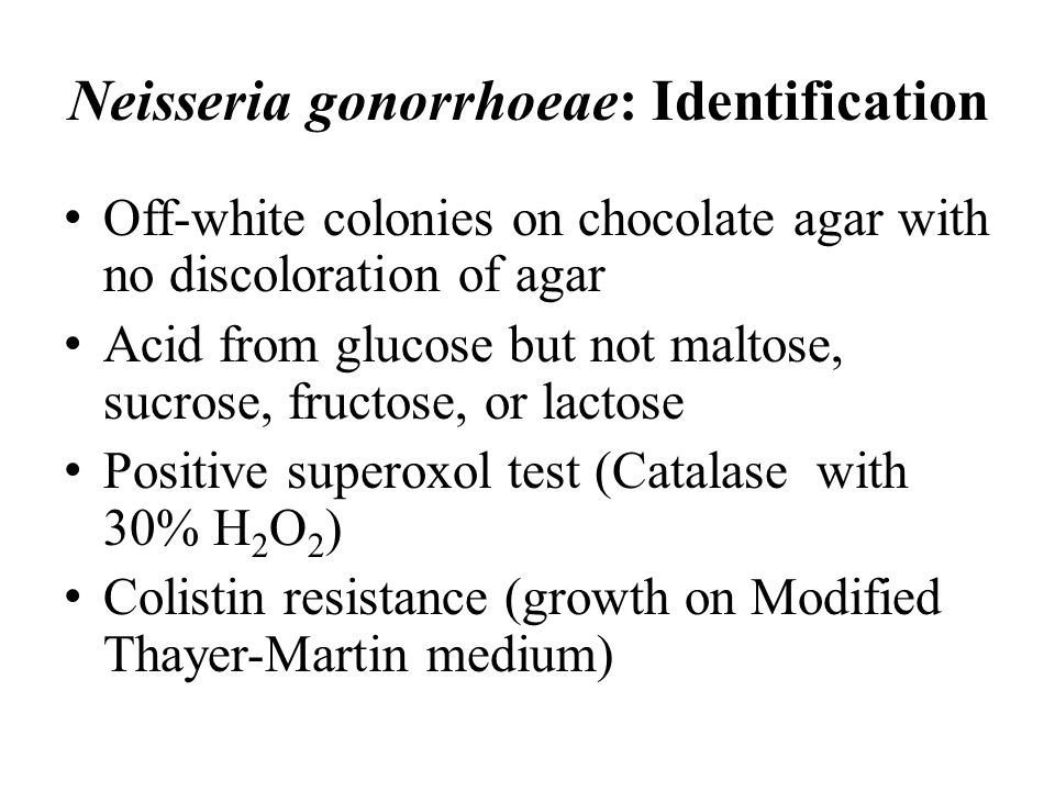 Neisseria gonorrhoeae: Identification