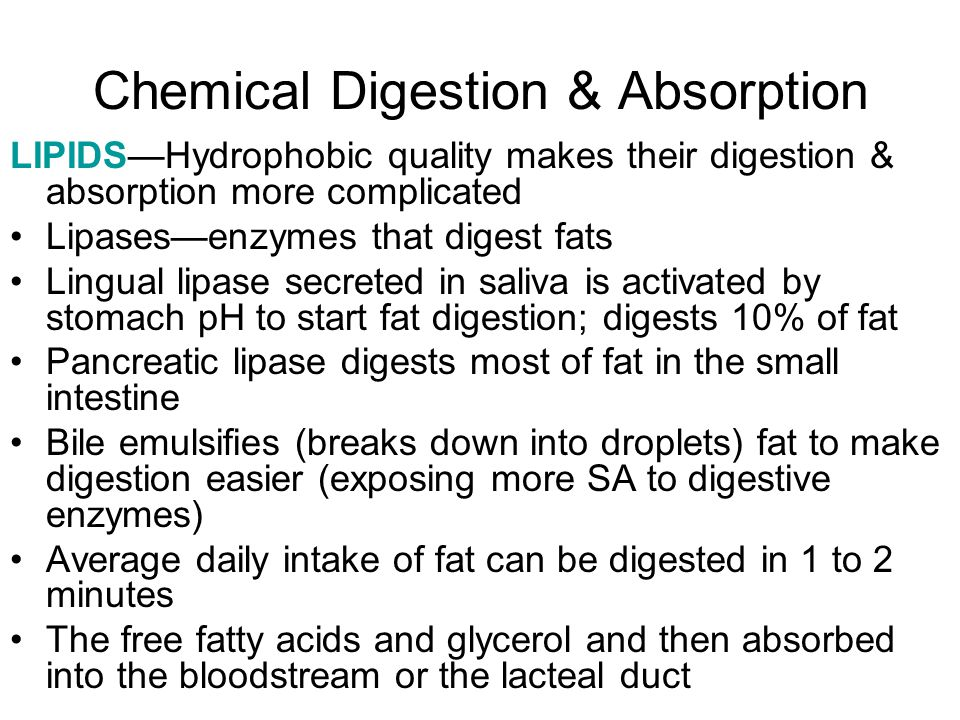 Chemical Digestion & Absorption