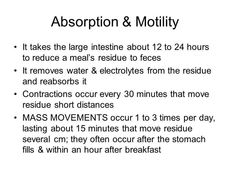 Absorption & Motility It takes the large intestine about 12 to 24 hours to reduce a meal's residue to feces.