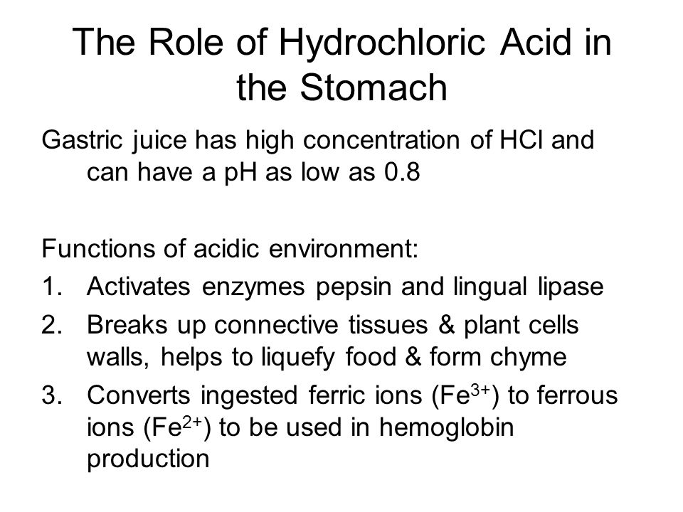 The Role of Hydrochloric Acid in the Stomach