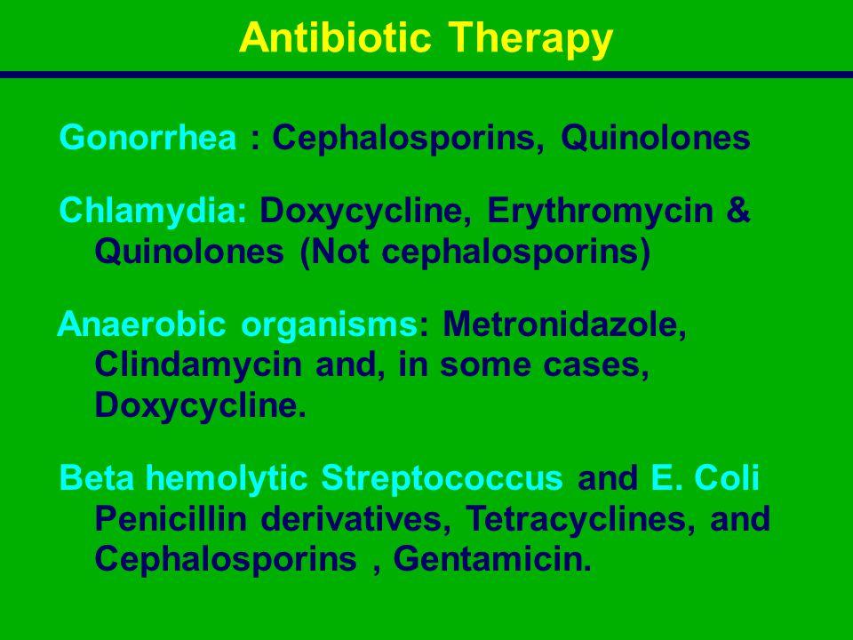 Antibiotic Therapy Gonorrhea : Cephalosporins, Quinolones
