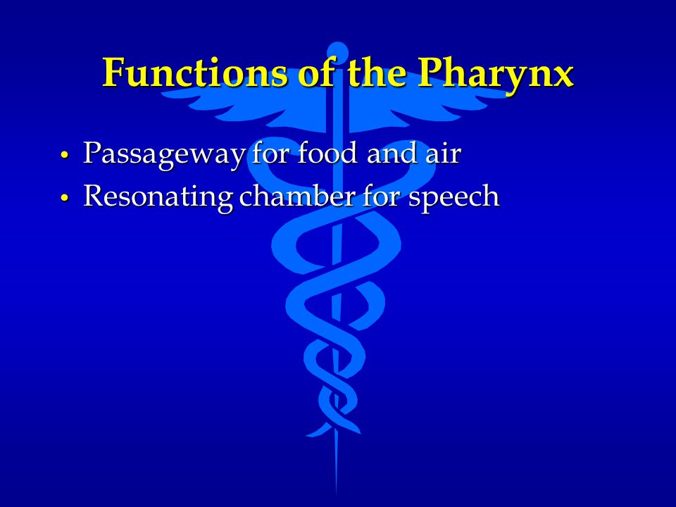 Functions of the Pharynx