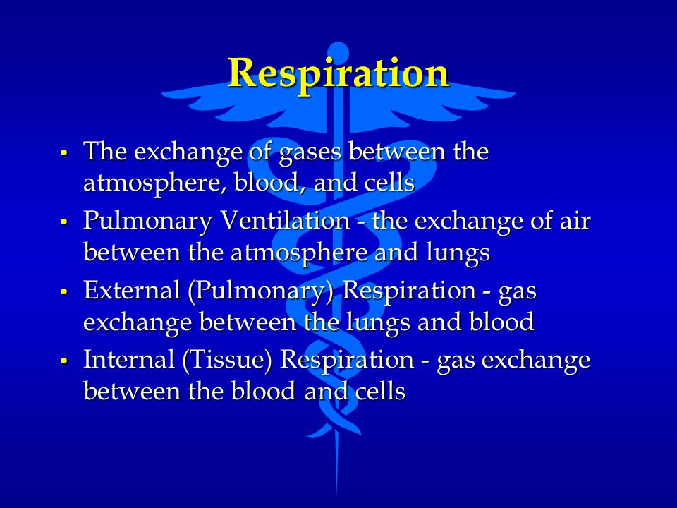 Respiration The exchange of gases between the atmosphere, blood, and cells.