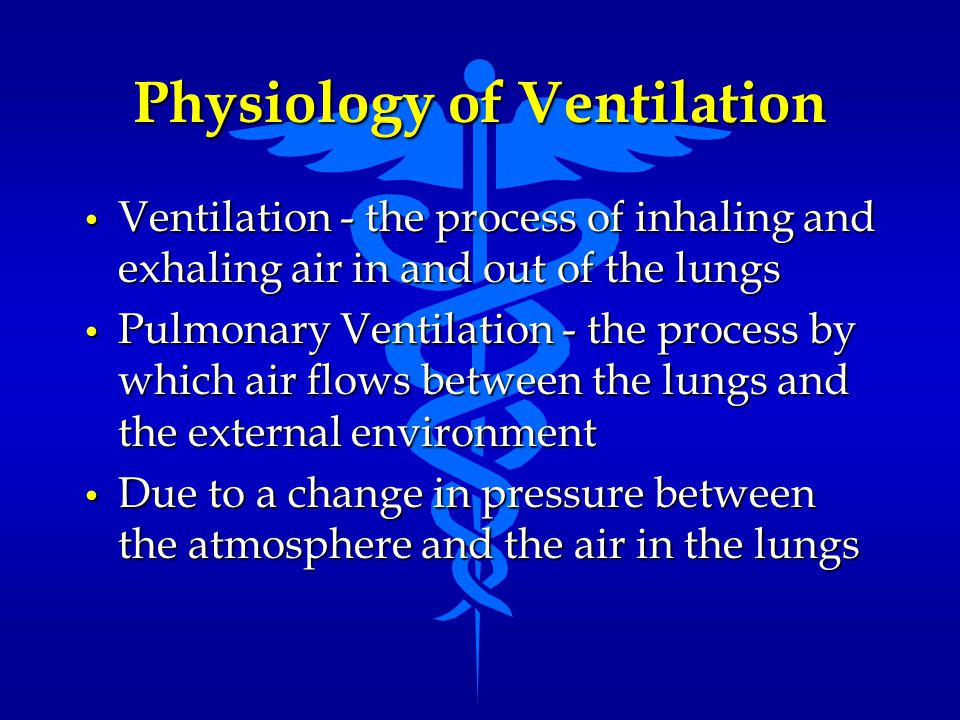 Physiology of Ventilation