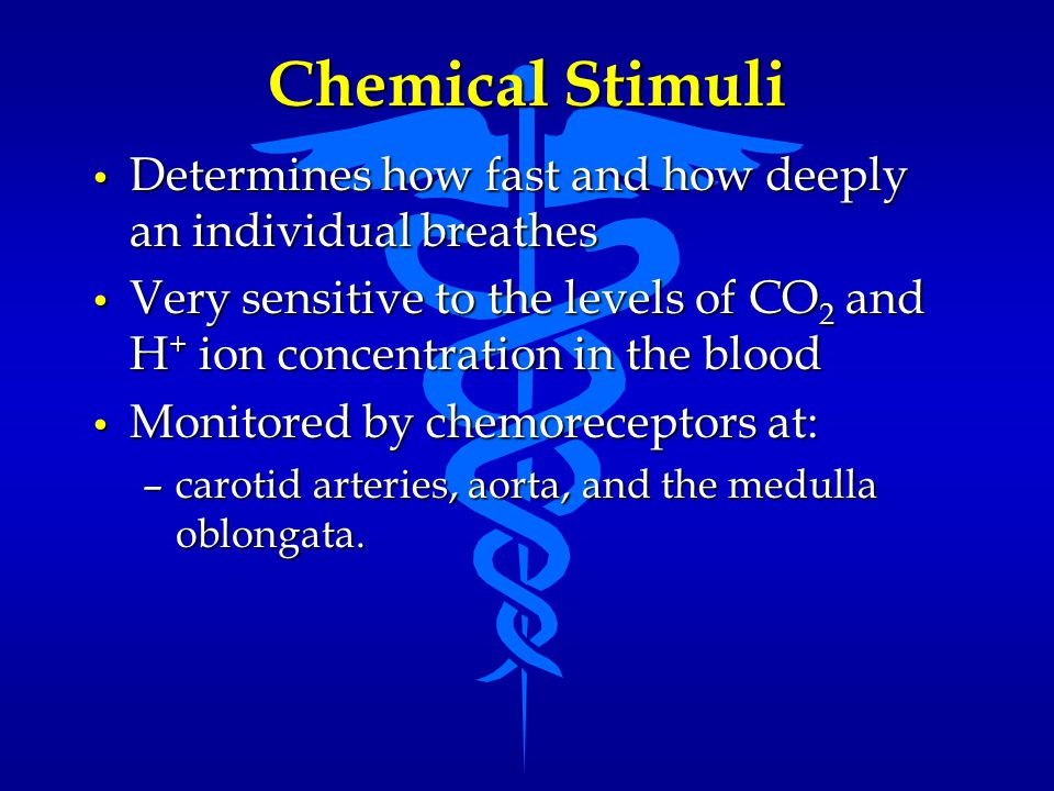 Chemical Stimuli Determines how fast and how deeply an individual breathes.