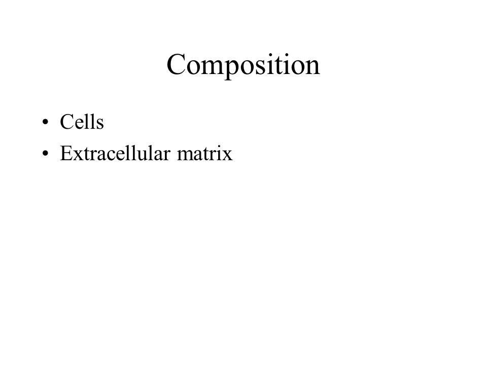 Composition Cells Extracellular matrix