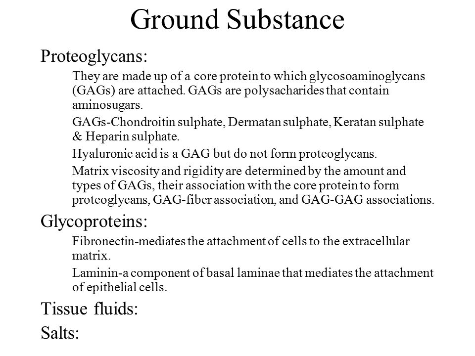 Ground Substance Proteoglycans: Glycoproteins: Tissue fluids: Salts: