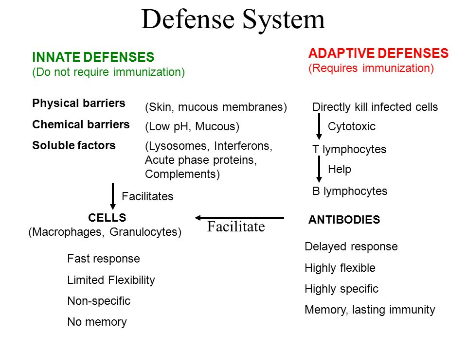 Defense System Facilitate ADAPTIVE DEFENSES (Requires immunization)