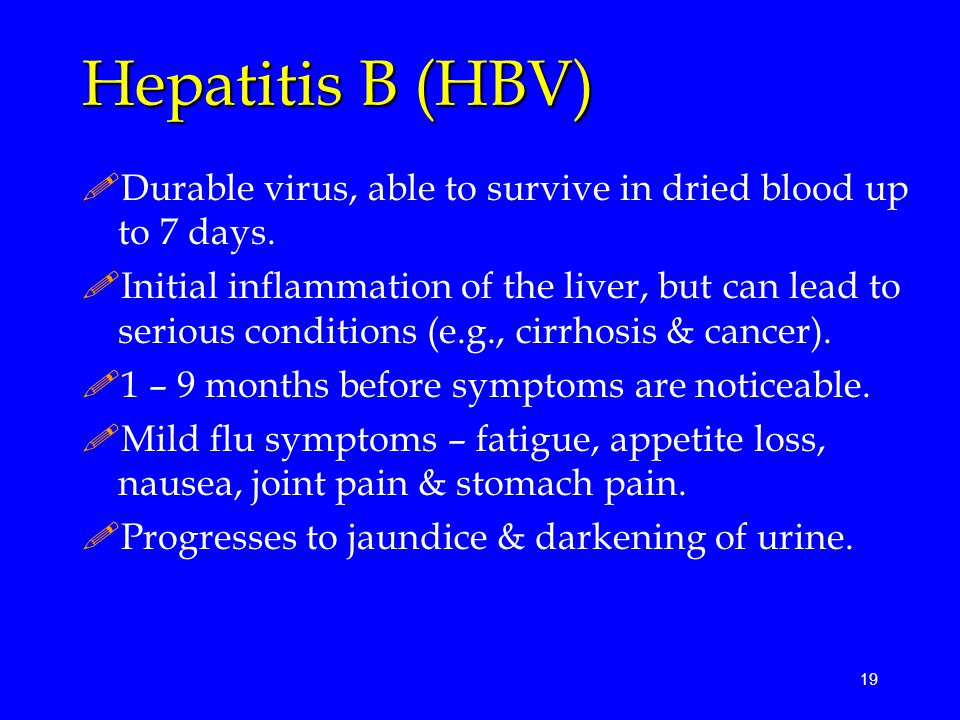 Hepatitis B (HBV) Durable virus, able to survive in dried blood up to 7 days.