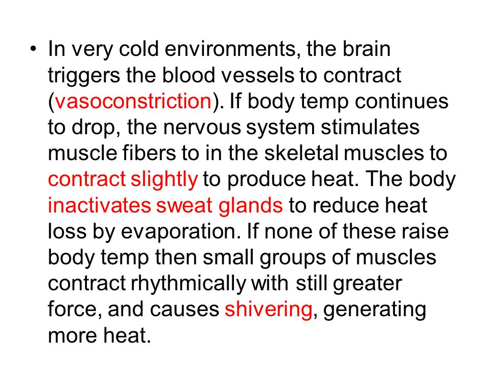 In very cold environments, the brain triggers the blood vessels to contract (vasoconstriction).