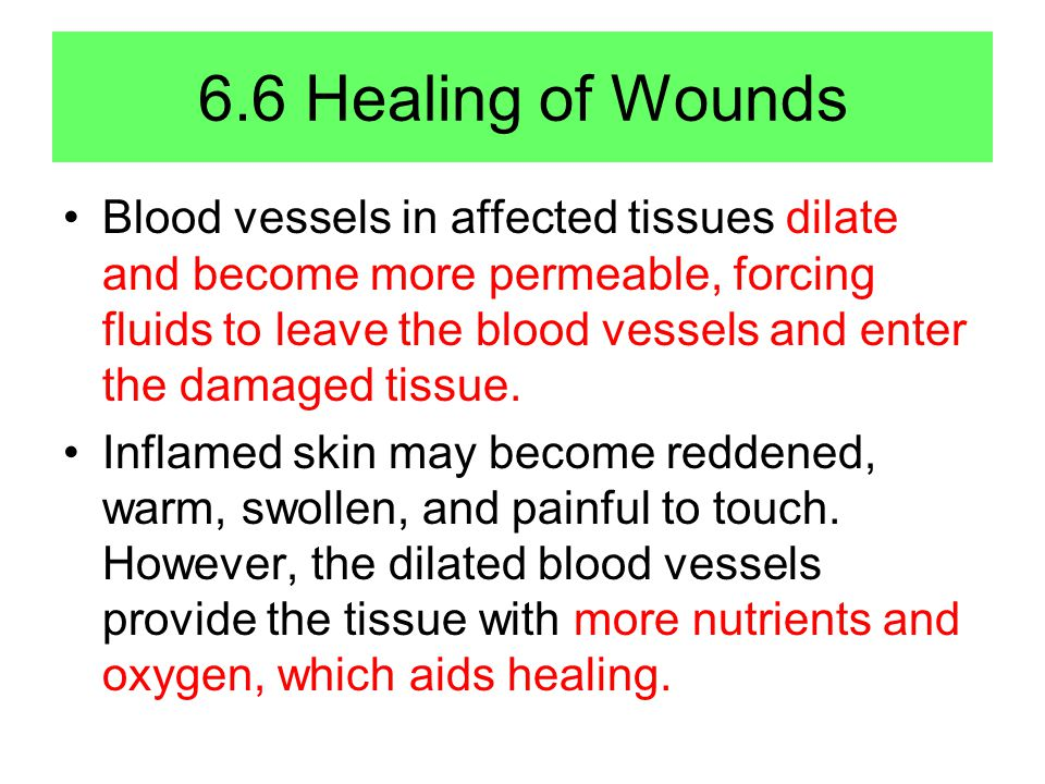 6.6 Healing of Wounds